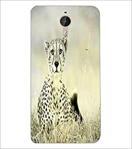 PrintDhaba Leopard D-4349 Back Case Cover for LETV LE 1 PRO ULTRA (Multi-Coloured)