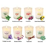 YMing Scented Candles Gift Set, Natural Soy Wax 2.5 Oz Per Cup Portable Glass Candles Women Gift with Strongly Fragrance Essential Oils for Stress Relief and Aromatherapy - 8 Pack