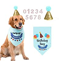 AriTan Dog Birthday Bandana Boy, Party Cone Hat and 10 Numbers Accessory, Double Layer Soft Triangle Scarf Bib for Large Medium or Small Pet (Blue)