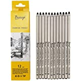 Bianyo Black Charcoal Pencils - 12 Piece Set. Medium