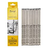 #2: Bianyo Black Charcoal Pencils - 12 Piece Set. Medium