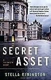 Secret Asset (Vintage Crime/Black Lizard)