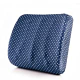 Best Blue Wave Soft Pillows - HAIYINGbeidian HAIYING Lumbar Back Support Cushion For Back Review