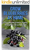 Grow Blueberries at Home: The complete guide to growing blueberries in your backyard! (English Edition)