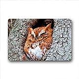 DOUBEE Generisches Owl Rutschfest Fussmatte Schmutzmatte Fußabstreifer 46cm X 76cm