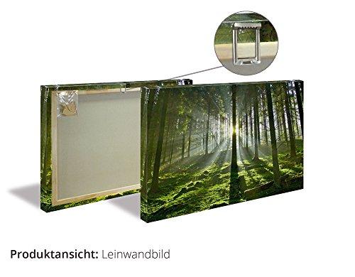 Artland Qualitätsbilder I Wandbilder Statement Bilder Sprüche Texte Foto Türkis C0BH Amrum