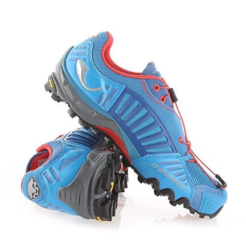 Dynafit Ms Feline Sl_4053865279100_firebrick/uppercut_12, Chaussures de Trail Homme blue