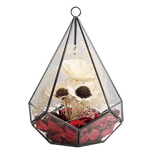 Flower pot Hanger, y & M (TM) 17,3cm appeso geometrico terrario in vetro vaso fiore Air vaso contenitore Home Office decorazione di nozze.
