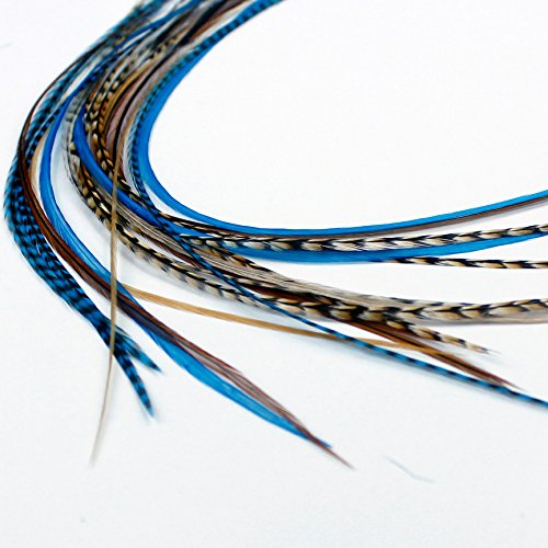 Extensions de cheveux en plumes véritables – Auburn Bleu
