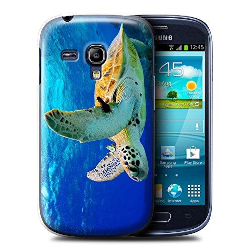 Stuff4® Hülle/Hülle für Samsung Galaxy S3 Mini/Schildkröte Muster/Wilde Tiere Kollektion -