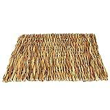 Erba naturale tessuta Mat Small Pet Animal Hamster tessuta a mano tappeto di erba piccoli animali letto per criceti Pig Parrot 2taglie Wood L