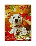 2 Stück Adventskalender für Hunde, Hunde-Adventskalend 24 Türchen