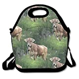Real Swiss Cow Brown Lunch Tote Bag Bags Awesome Lunch Handbag Lunchbox Box For School Work Outdoor