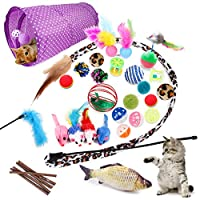 28 Pcs Cat Toys Kitten Toys Assorted, Cat Tunnel Catnip Fish Feather Teaser Wand Fish Fluffy Mouse Mice Balls and Bells Toys for Cat Puppy Kitty