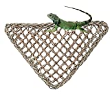 Yimosecoxiang confortevole puzzle Pet Supplies lucertola lettino Reptile Toys amaca Pet triangolo Anoles Geckos Iguanas-Sea Grass color