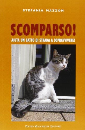 Scomparso. Aiuta un gatto di strada a sopravvivere
