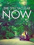 The Spectacular Now: Perfekt ist jetzt