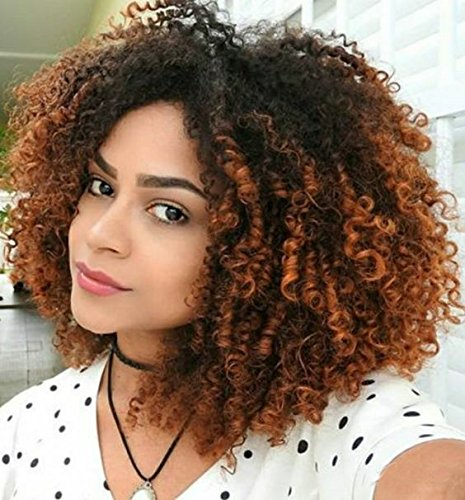 auspiciouswig Ombre brasilianisches Virgin Hair Full Lace Front Perücken Afro lockig Echthaar Lace Perücken natürlichen Haaransatz Top Grade