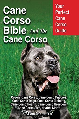 Cane Corso Bible And the Cane Corso: Your Perfect Cane Corso Guide Covers Cane Corso, Cane Corso Puppies, Cane Corso Dogs, Cane Corso Training, Cane ... Breeders, Cane Corso Size, Health, More! Corso Cover