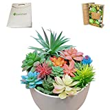 Lot de 14 plantes artificielles non potées en pot - Pour intérieur ou bureau - Faux grandes tiges - Guirlande à suspendre dans des pots muraux rustiques - Avec sac cadeau et livre électronique