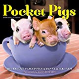 Pocket Pigs Mini Calendar 2020