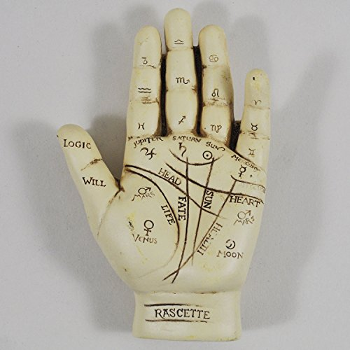 Palmistry Hand, Ornament. L12.5cm & Palm Reading Instruction Booklet by Fiesta Studios