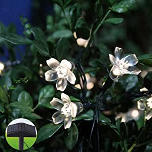 Innoo Tech Warm White Blossom Garden String Fairy Lights Solar Powered for Outdoor,Party,Patio,Wedding,Porch,Lawn,Christmas(80 LED)