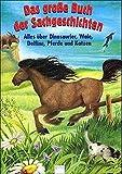 Das große Buch der Sachgeschichten, Alles über Dinosaurier, Wale, Delfine, Pferde und Katzen