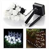 Itian Cuerda Luminosa de 20 Pies - de Bolas de Cristal para Fiesta Navidad Hogar o Exterior Jardín Árbol Camino de Multicolor Decoración Iluminación Luces (Blanco)