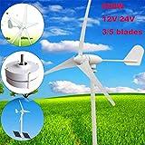 SISHUINIANHUA Wind-Generator 600W 12 / 24V automatischer Laternen-Generator mit Wind-Prüfer 600W...