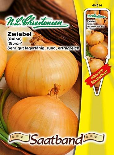 N.L. Chrestensen 40614 Zwiebel Sturon (Zwiebelsamen)