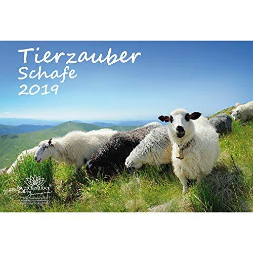Tierzauber Schafe · DIN A3 · Premium Kalender 2019 · Bauernhof · Natur · Tiere · Edition Seelenzauber