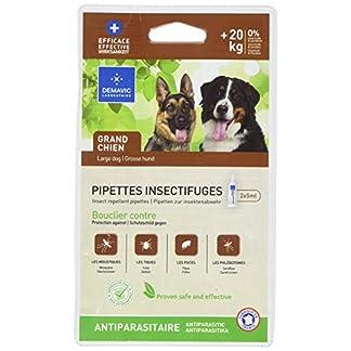 demavic pipettes insectifuge for big dog + 20 kg Demavic Pipettes Insectifuge for Big Dog + 20 kg 51 Zw 2BpJxEL