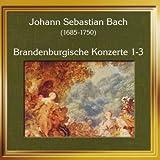 Brandenburgisches Konzert Nr. 3 G-Dur BWV 1048 - I. Alllegro moderato