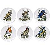 British oiseaux de 6 Assiettes-vaisselle