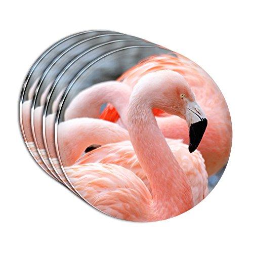 proud-flamant-rose-lot-de-4-dessous-de-verre-en-acrylique