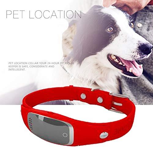Wrqq GPS Localizador Pet Anti Perdido Rastreador Micro Inteligente Alarma Impermeable para Mascotas Perro Gato Collares (Puede Apoyar La GrabacióN),Red,50 * 50 * 43mm