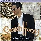 Spanish Horses - Part 1