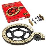 REGINA Z-anello catena per Ducati 695 Monster 2006-2007 (), 800 Monster scuro (UI/2003-2004)