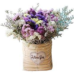 TELLW Ramo de Flores secas Naturales Set Flores Verdaderas Olvidado-me-Not decoración del hogar Flor arreglo Floral DIY Regalos Foto Props