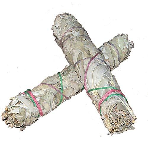 2 Stück Lange Salbei-Stäbe / Räucher-Bündel (je ~ 40gr.) von Native-Spirit.eu -- ~18-20 cm (7 Inch) white sage (2) -