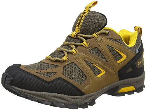 Hi-Tec - Fugitive Waterproof, Scarpe Sportive Outdoor Uomo Marrone (Smokey Brown 042)