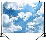 DePhoto 9X6FT (270X180CM) Herzform Blauer Himmel Weiße Wolken Nahtlose Vinyl Fotografie Hintergrund Foto Hintergrund Stu
