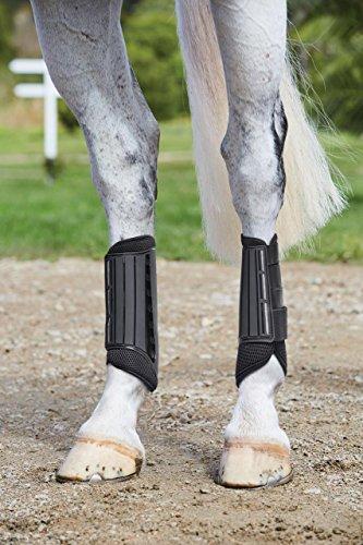 Weatherbeeta Zweispänner Hind Stiefel, schwarz, Volle Größe -
