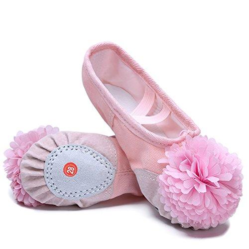 Wxmddn Scarpe da ballo Soft Bottom pratica scarpe Cat Claw scarpe Soft suole danza scarpe Rosa A