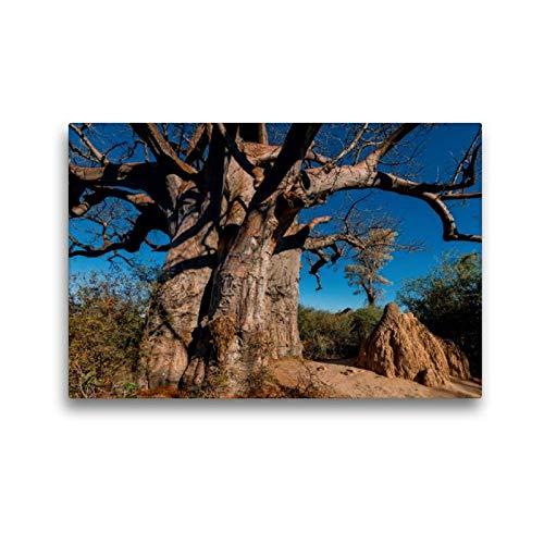 CALVENDO Toile de qualité supérieure - 45 cm x 30 cm - Baobab géant dans Les casseroles Makgadikgadi - Tableau sur châssis - Tableau imprimé sur Toile véritable - Impression sur Toile Nature