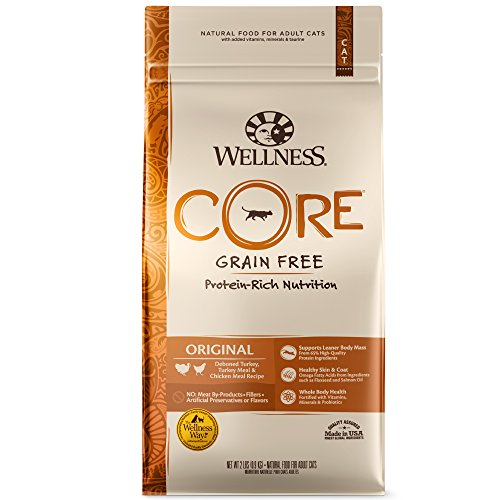 Wellness Core Natural sin grano seco Cat Food