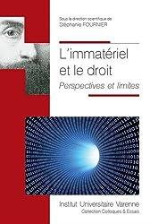 L'immatériel et le droit. Perspectives et limites