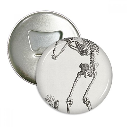 Menschlichen Körper Muster Dekoration Skelett Rund Flaschenöffner Kühlschrank Magnet Pins Badge Button Geschenk 3 (Körper Menschlichen Paket)