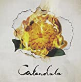 Songtexte von a crowd of rebellion - Calendula